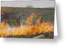 Park Workers Set A Controlled Fire Greeting Card by Annie Griffiths