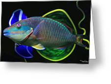 Parrot Fish With Glass Art Greeting Card