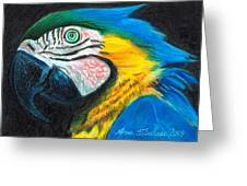 Parrot Miniature Greeting Card
