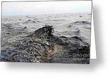 Part Of An Oil Slick In The Gulf Greeting Card