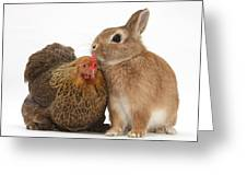 Partridge Pekin Bantam With Rabbit Greeting Card