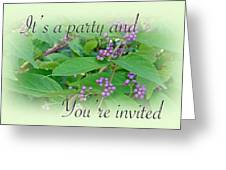 Party Invitation - General - American Beautyberry Shrub Greeting Card by Mother Nature