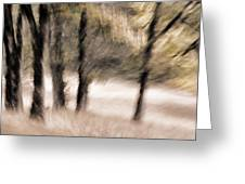 Passing By Trees Greeting Card