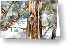 Passing Through Air Greeting Card by Leslie Kell