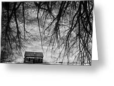 Past The Woods Greeting Card