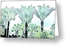 Pastel Palms Greeting Card