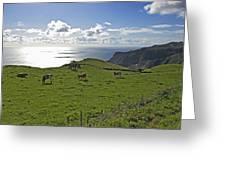 Pastoral Landscape Of Santa Maria Island Greeting Card