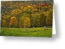 Pastoral Painted Greeting Card