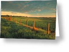 Pasture Sunrise Greeting Card