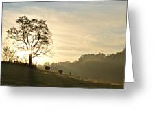 Pasture Sunrise Greeting Card