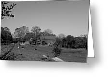 Pastures And Farm Greeting Card