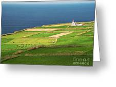 Pastures And Lighthouse Greeting Card
