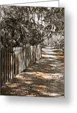 Path Along The Fence Greeting Card
