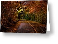 Path At Night Greeting Card