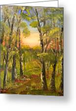 Path In Forest Greeting Card