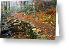 Path Through Forest, Shenandoah Greeting Card