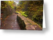 Path Through The Gorge Greeting Card