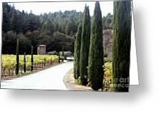 Path To Amerosa Greeting Card by Gail Salituri