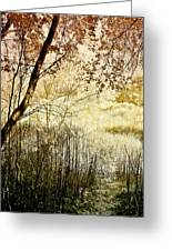 Path To The Meadow Greeting Card