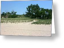 Pathway From Beach Greeting Card