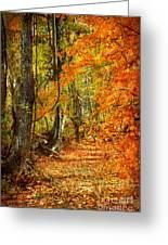 Pathway Through Autumn Woods Greeting Card by Cheryl Davis