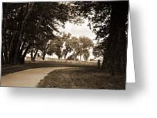 Pathways Greeting Card