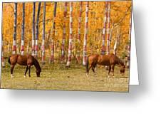 Patriotic Autumn Greeting Card