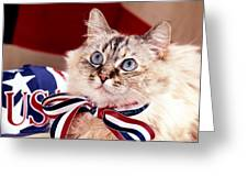 Patriotic Puddy Cat Greeting Card