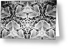 Patterns Of Black And White Greeting Card