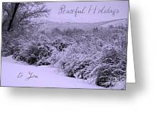 Peaceful Holidays To You Greeting Card