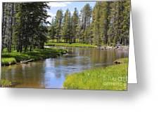Peaceful Mountain Stream Greeting Card