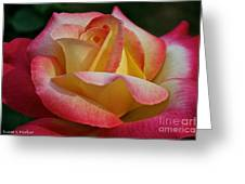 Peaceful Petals Greeting Card