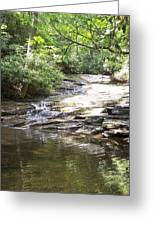Peaceful Reflection Greeting Card