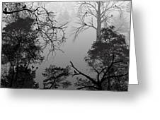 Peaceful Shades Of Gray Greeting Card