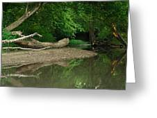 Peaceful Stream Greeting Card