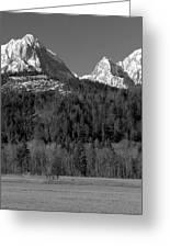 Peaks Near Schwangau In The Bavarian Alps Greeting Card