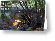 Pedestrian Bridge And Strawberry Creek  . 7d10132 Greeting Card