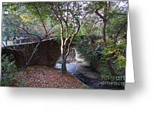 Pedestrian Bridge And Strawberry Creek  . 7d10152 Greeting Card