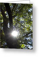 Peek A Boo Sunshine Greeting Card