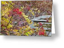 Peeking Through The Berries Greeting Card