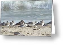 Peeps At The Beach #2 Greeting Card