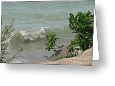 Pelee Shore Greeting Card