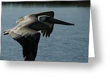 Pelican Fly By Greeting Card