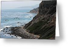 Pelicans Colony Flying Over Cliff Greeting Card