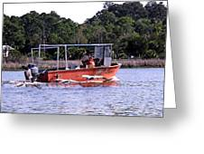 Pelicans Following Boat Greeting Card