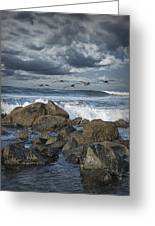 Pelicans Over The Surf On Coronado Greeting Card