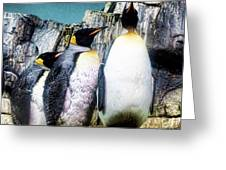 Penguins Greeting Card by Anne Ferguson