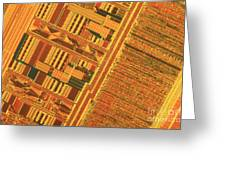 Pentium Computer Chip Greeting Card by Michael W. Davidson