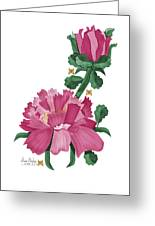 Peony In Pink Greeting Card by Anne Norskog