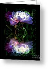 Peony Reflected Greeting Card